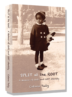 Split at the Root paperback